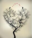 Pájaros y árbol Imagen de archivo libre de regalías
