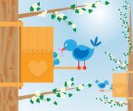 Pájaros y birdhouse Foto de archivo libre de regalías