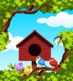 Pájaros y casa del pájaro en el árbol Imagen de archivo