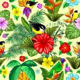 Pájaros y diseño inconsútil exótico floral del vector del modelo de la naturaleza stock de ilustración