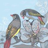 Pájaros y flores florecientes. Tarjeta del ejemplo del vector. Usted puede cr Foto de archivo libre de regalías