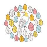 Pájaros y hojas. Tarjeta del ejemplo del vector del círculo Imagen de archivo libre de regalías