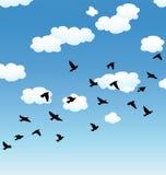 Pájaros y nubes de vuelo en el cielo libre illustration