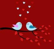 Pájaros y rojo del amor Imágenes de archivo libres de regalías