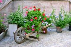 Pálete de madeira com flores frescas Fotografia de Stock Royalty Free