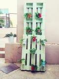 pálete de madeira do armazenamento usada na jardinagem para uma decoração da parede como a prateleira para potenciômetros de flor Foto de Stock Royalty Free