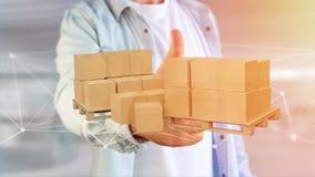 Pálete dos carboxes com sistema da conexão de rede - 3d rendem Imagens de Stock Royalty Free