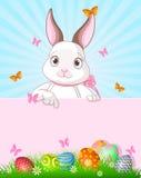 Páscoa Bunny Design ilustração do vetor