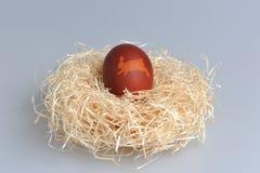 A Páscoa decorou o ovo no ninho no cinza Imagem de Stock