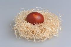 A Páscoa decorou o ovo no ninho no cinza Imagens de Stock Royalty Free