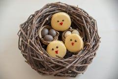 Páscoa Macarons com ovos da páscoa Fotografia de Stock Royalty Free