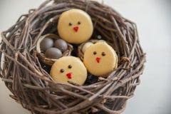 Páscoa Macarons com ovos da páscoa Fotos de Stock Royalty Free