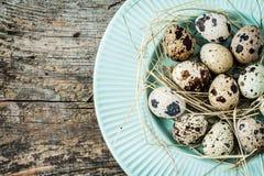 Páscoa - ovos de codorniz com feno na placa azul pastel de cima de Imagem de Stock Royalty Free