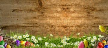 Páscoa - prado com fundo do ovo da páscoa e o de madeira Imagem de Stock Royalty Free
