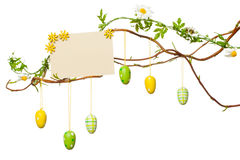 A Páscoa ramifica - com ovos da páscoa, sinal vazio/cartão, isolado Fotografia de Stock Royalty Free