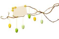 A Páscoa ramifica - com ovos da páscoa, sinal vazio/cartão, isolado Imagens de Stock