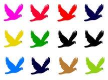 Pássaro ilustração stock