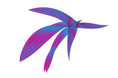 Pássaro abstrato do Web ilustração do vetor