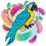 Pássaro amarelo brilhante do papagaio com asas azuis ilustração stock