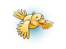 Pássaro amarelo pequeno Fotografia de Stock
