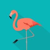 Pássaro aquático do flamingo Suporte do flamingo em um pé Cor lisa do rosa do estilo do projeto no fundo azul com sombra macia Il ilustração royalty free