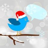 Pássaro azul do Natal com bolha da mensagem Fotos de Stock