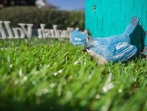 Pássaro azul na grama verde Foto de Stock Royalty Free