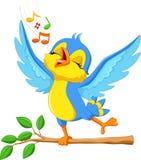 Pássaro bonito que canta Fotos de Stock
