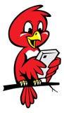 Pássaro bonito usando o telefone Imagens de Stock Royalty Free