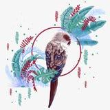 Pássaro brilhante nas folhas da selva ilustração royalty free