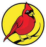 Pássaro cardinal Fotografia de Stock