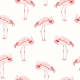 Pássaro cor-de-rosa do flamingo que está o teste padrão sem emenda Fotografia de Stock