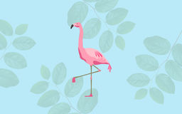 Pássaro cor-de-rosa do flamingo sobre o fundo azul Fotografia de Stock