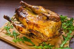 Pássaro cozinhado do galinha-do-mato imagens de stock royalty free
