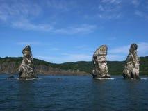 Pássaro da colônia nas rochas altas na baía de Avacha verão Península de Kamchatka, Rússia Foto de Stock Royalty Free
