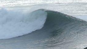 Pássaro da gaivota que voa sobre uma onda de oceano grande filme