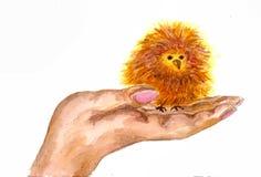 Pássaro de bebê pequeno em uma palma Imagem de Stock Royalty Free