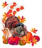 Pássaro de Turquia com colheita ilustração do vetor