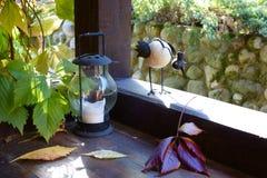 P?ssaro decorativo curioso com uma coroa em uma varanda de madeira imagens de stock
