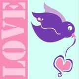 Pássaro do amor Imagens de Stock Royalty Free