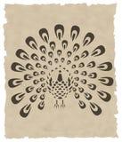 Pássaro do asian do vetor ilustração royalty free