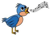 Pássaro do canto Fotografia de Stock