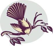Pássaro do fantail de Nova Zelândia ilustração stock