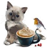 Pássaro do gatinho, do pisco de peito vermelho e copo do cappuccino Imagem de Stock Royalty Free