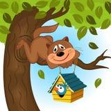 Pássaro do gato em uma árvore Imagens de Stock Royalty Free