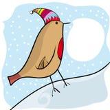 Pássaro do Natal Fotos de Stock Royalty Free