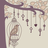 Pássaro-e-chave--ele s-gaiola do ` Imagem de Stock