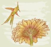 Pássaro e flor Fotografia de Stock