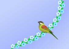 Pássaro e flores pequenos Imagem de Stock
