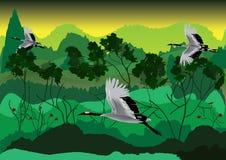 Pássaro e floresta Fotos de Stock Royalty Free